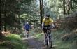 picture of Mountain biking at Brechfa