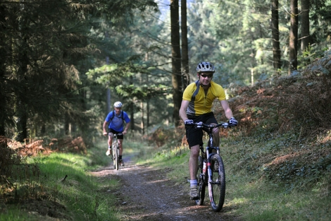 picture of Mountain biking at Brechfa
