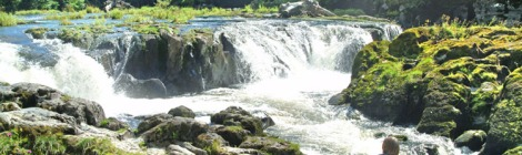 photo of Cenarth Falls