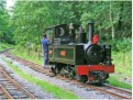 Teifi Valley railway