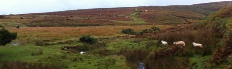 photo of Llanllwni Mountain. Copyright Anne Jones, Talardd