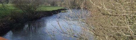 Afon Teifi from the railway bridge