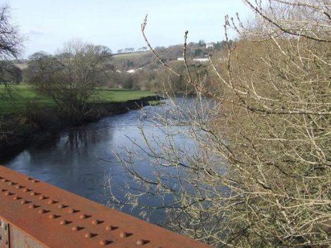 Afon Teifi from the railway bridge